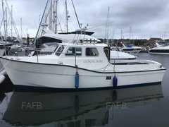 Newhaven sea warrior 28 - Coral bay - ID:104193